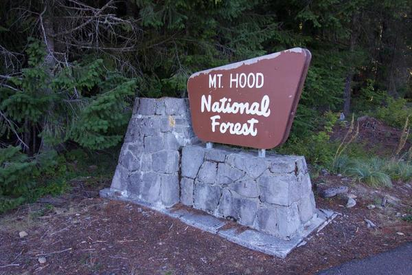 Welcome to Mt. Hood National Forest.