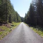 Paved mountain roads. My favorite!